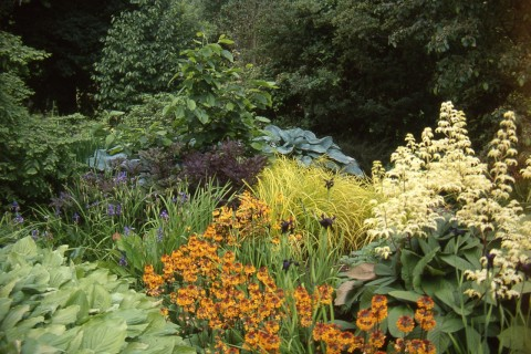 On the Hampton Court Flower Show gardens tour we visit Kew's Wakehurst Place in West Sussex.
