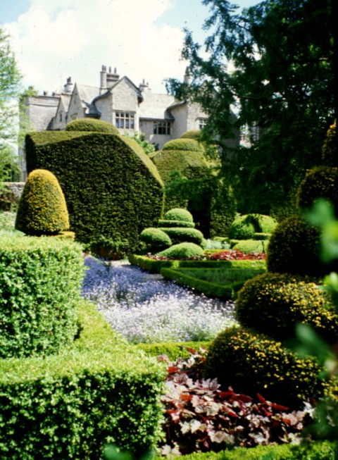 The 17C yew topiary at Levens Hall, Cumbria.